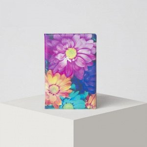 Обложка для паспорта, цвет разноцветный 5243201