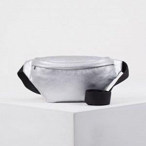 Сумка поясная, отдел на молнии, наружный карман, цвет серебро