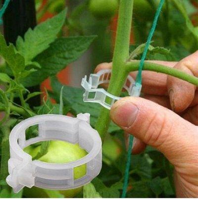 Все в наличии! Товары для дачи, сада! Быстрая раздача! — Подвязываем растения — Инструменты и инвентарь