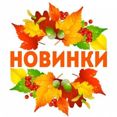 Дом, Сад, Огород - урожай на круглый год! — Новинки! 23/10 — Для дома
