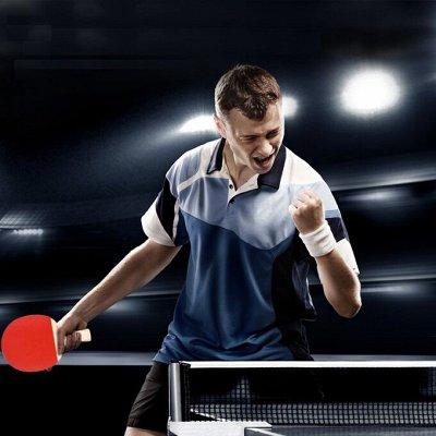 СпортZAL — товары для здоровья и спорта — Настольный теннис — Теннис