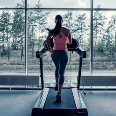СпортZAL - товары для здоровья и спорта — Тренажеры — Спортивный инвентарь