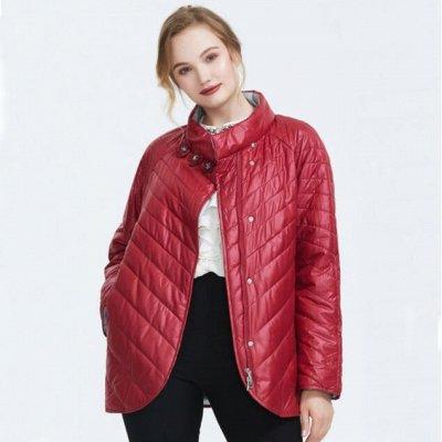 As**d – шикарные куртки и пуховики по Супер ценам! — Куртки демисезонные ✔ Есть с МЕХОМ НОРКИ — Демисезонные куртки