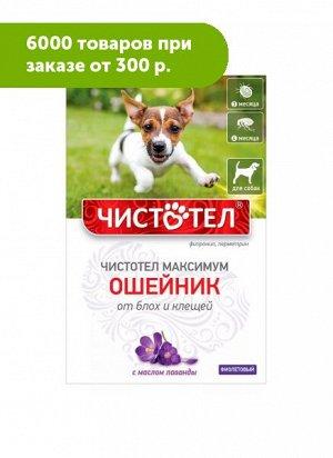 Чистотел Максимум Ошейник от блох и клещей д/собак с лавандой Фиолетовый