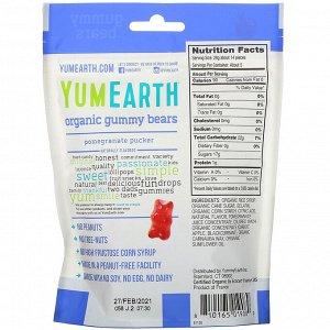 YumEarth, Жевательные мишки, гранатовый леденец, 5 унц. (142 г)