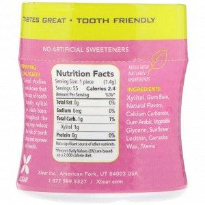 Xlear, Spry, Stronger Longer Dental Defense Gum, Natural Bubblegum, Sugar Free, 55 Count