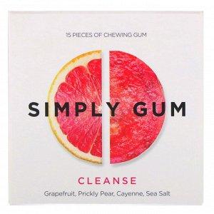 Simply Gum, Очищающая жевательная резинка, 15 шт.