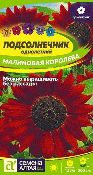 Цветы Подсолнечник Малиновая Королева/Сем Алт/цп 0,5 гр.