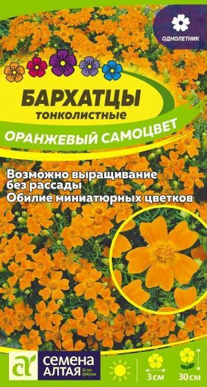 Бархатцы Оранжевый Самоцвет тонколистн./Сем Алт/цп 0,1 гр.