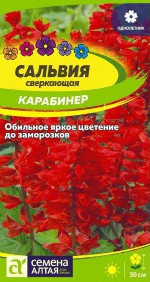 Цветы Сальвия Карабинер сверкающая/Сем Алт/цп 0,1 гр.