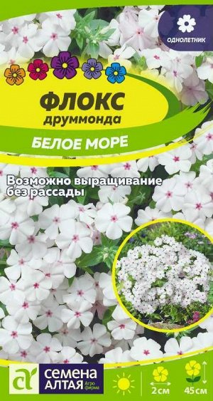 Цветы Флокс Белое Море друммонда/Сем Алт/цп 0,1 гр.