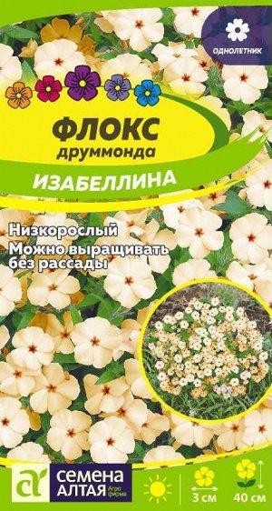 Флокс Изабеллина Друммонда/Сем Алт/цп 0,1 гр.
