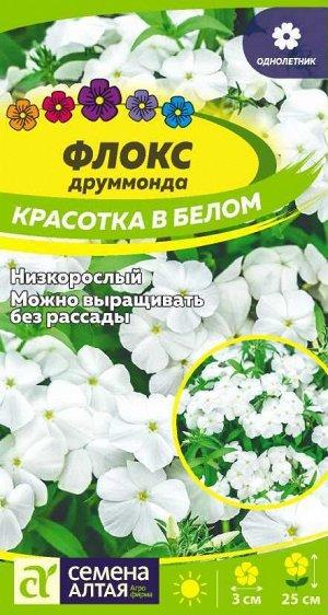 Флокс Красотка в белом Друммонда/Сем Алт/цп 0,1 гр.