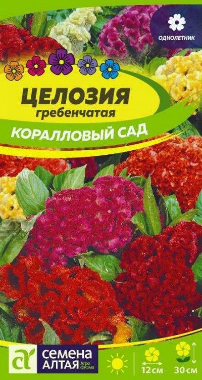 Алтайские семена — Цветы однолетние — Семена однолетние