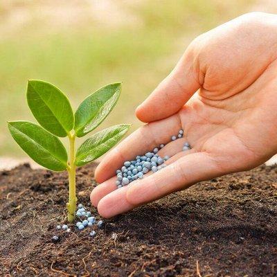 Удобрения 🌱Семена + Укрывной материал 🏡 — Удобрения ПРОЛОНГированного действия — Удобрения