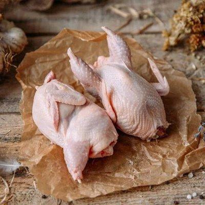 ФЕРМЕРСКИЙ МАГАЗИН. Натуральные продукты для вашей семьи — Натуральная Фермерская КУРОЧКА и ПЕРЕПЕЛА ✔️Нежные и вкусные — Птица