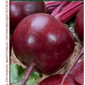 Товары на любой вкус и кошелек Актуальное наличие — ОВОЩИ: СВЕКЛА, ФАСОЛЬ — Семена овощей