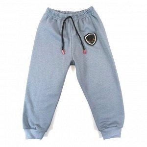 Спортивные штаны 5045/1 (серые, эмблема)