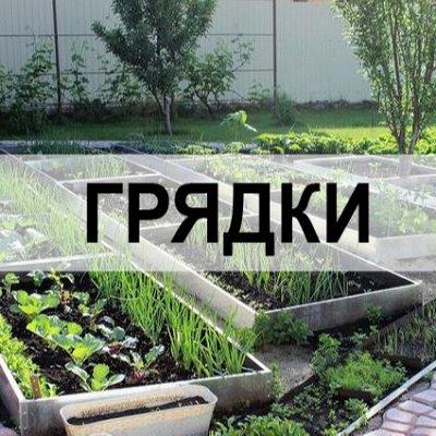 Сибирские грядки и всё для сада.🌾 Рассада. — Грядки и клумбы — Садовый декор