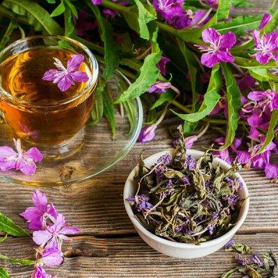 Огромный выбор чая и кофе на любой вкус — Иван-чай — Чай