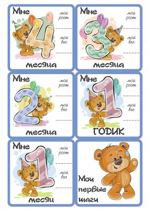 Карточки Мишки. мальчик