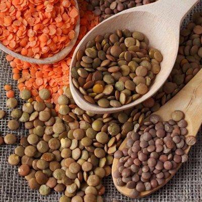 Манго,Орешки, Сухофрукты! Вкусно и Полезно! Быстрая раздача! — Бобовые — Орехи