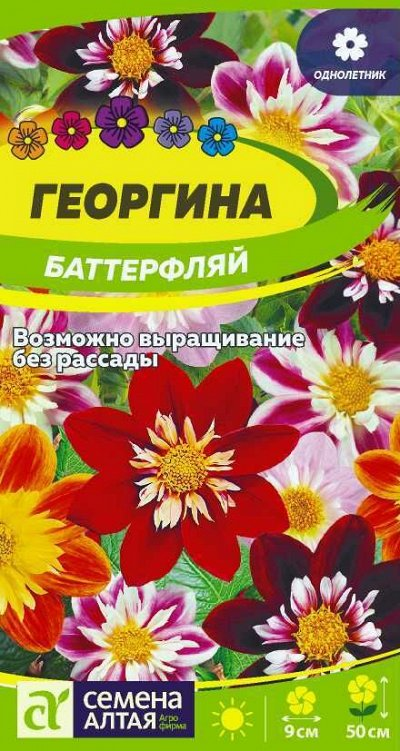 Семена Алтая. — Георгина — Семена однолетние