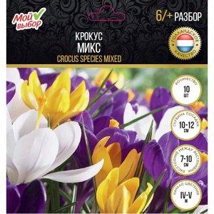 Крокус Микс, р-р 6/+,10 шт
