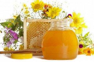 Мёд луговой с леспедецей