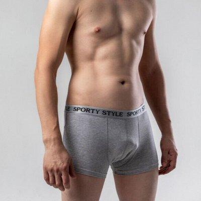 Fest Brend Underwear. Нижнее белье до -91% — Мужская коллекция bro — Трусы