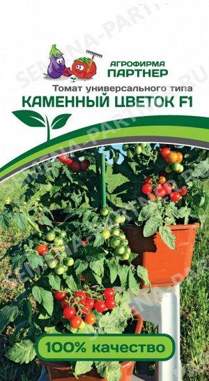 ТМ Партнер Томат Каменный Цветок F1 ( 2-ной пак.)/ Гибриды томата черри для открытого грунта
