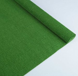 Гофра Италия 140г*м 50*250см №991 зеленый лист