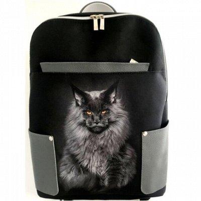 Nordi- всегда с тобой Сумки, кошельки, клатчи, рюкзаки — Сумка- рюкзак Leonardo — Рюкзаки и портфели