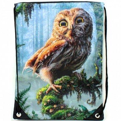 Nordi- всегда с тобой Сумки, кошельки, клатчи, рюкзаки — Рюкзак-мешок FORCE — Рюкзаки