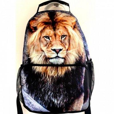 Nordi- всегда с тобой Сумки, кошельки, клатчи, рюкзаки — Городской рюкзак ARIGO — Рюкзаки