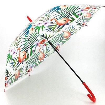 ☔Зонты и Дождевики для всей семьи В наличии☔ — Зонты из поливинила-цветы,фламинго — Зонты и дождевики