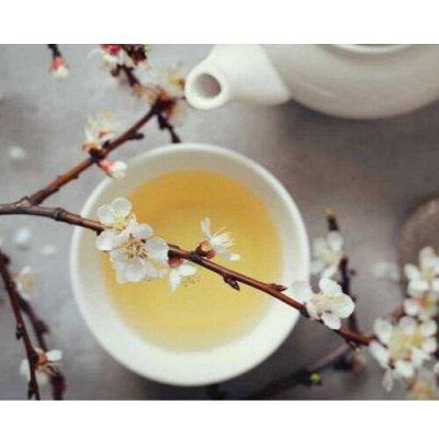 Огромный выбор чая и кофе на любой вкус — Белый чай — Чай