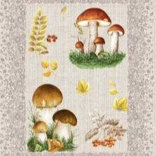 ECOLAN - домашний текстиль, яркие принты! Наматрасники! — Полотенца рогожка — Полотенца