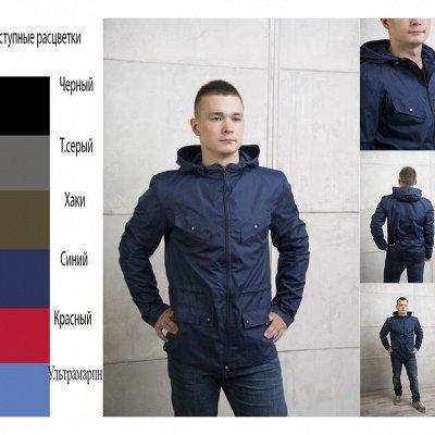 Yollochka. Верхняя одежда для всей семьи. Яркие решения. — Мужские ветровки — Куртки