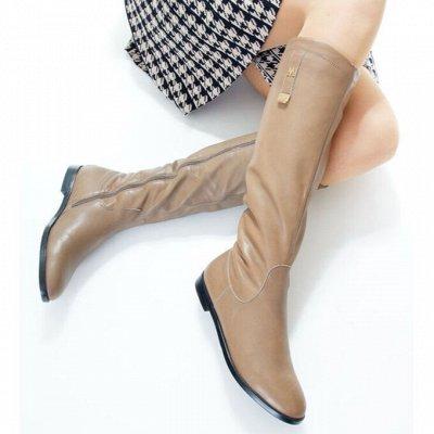 Обувь + без рядов! Шикарные новинки осень-зима 2020!  — Сапоги демисезонные — Сапоги