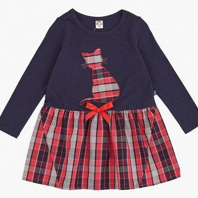 MINI MAXI: Садик+школа самый полный ассортимент  — Для девочек/Платья трикотажные длинный рукав — Платья и сарафаны