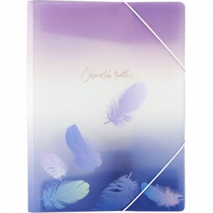 Папка на резинках Axent Colourful Feather 1507-93-A, А4+