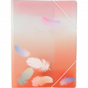 Папка на резинках Axent Colourful Feather 1507-94-A, А4+