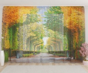 Фототюль Осенний парк
