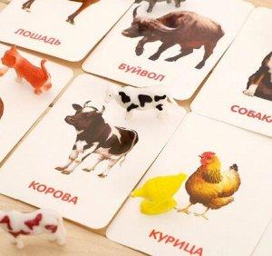 Развивающий набор с карточками.