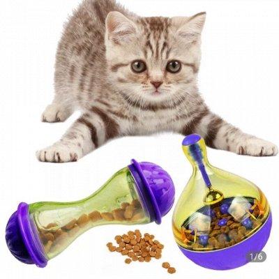 Одежда и аксессуары для всей семьи - Быстрая раздача! — Для за-мурр-чательных наших — Для кошек