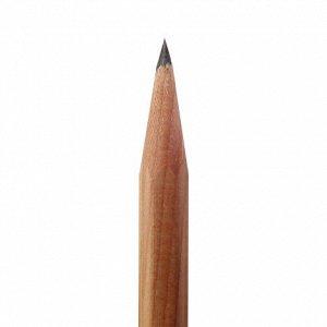 Набор простых карандашей с колпачками НВ 4шт.