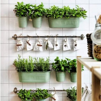 🍀LEROY MERLIN🍀Дом для дома! — 15-40% Огород на окне/все для выращивания рассады — Семена зелени и пряных трав
