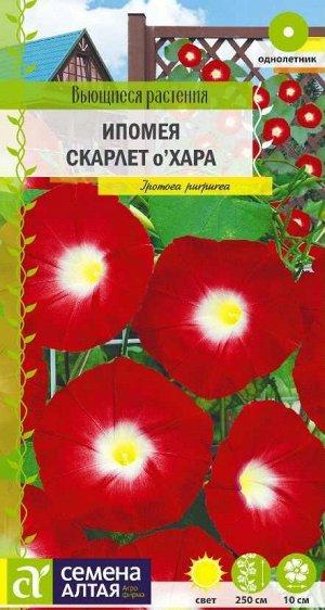 Ипомея Скарлет О'Хара/Сем Алт/цп 0,5 гр. Вьющиеся растения