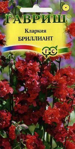 Цветы Кларкия Изящная Бриллиант/Гавриш/цп 0,1гр.